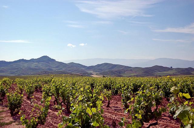 Vista de La Rioja