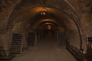 Hileras de botellas en una cava